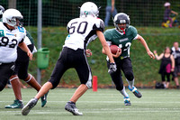 08.09.2013 Swarco Raiders Tirol vs Danube Dragons