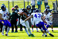 AUT, AFL, Danube Dragons vs Dacia Vikings