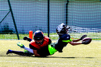 AUT, U11, Danube Dragons vs Junior Tigers