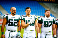 AUT, AFL, Vienna Vikings vs Danube Dragons