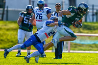 AUT, AFL, Danube Dragons vs Steelsharks Traun