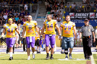 AUT, AFL, Raiffeisen Vikings vs Danube Dragons